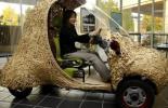 Японцы создали бамбуковый электромобиль