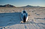 Venturi VBB-3 – сражение за рекорд